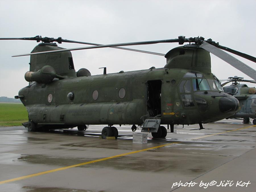 Boeing CH-47D Chinook (D-667)